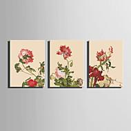 Canvas Set Kukkakuvio/Kasvitiede European Style,3 paneeli Kanvas Pystysuora Tulosta Art Wall Decor For Kodinsisustus