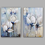 100%  Hand-Painted Abstract / Animal Hang-Painted Oil PaintingModern / Classic Two Panels Canvas Oil Painting For Home Decoration