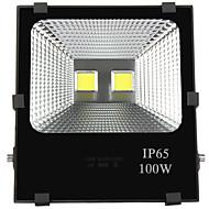 100W תאורה שוטפת לד 2 לד בכוח גבוה 10000 lm לבן חם / לבן קר דקורטיבי / עמיד במים V חלק 1