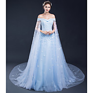 Formal Evening Dress - Convertible Dress  A-line Bateau Court Train Tulle with Appliques 2-16 in stock