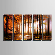 Canvas Set Landschap Bloemenmotief/Botanisch Modern,Vijf panelen Canvas Verticaal Print Art wall Decor For Huisdecoratie