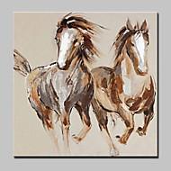 Pintados à mão Animal Pop Pinturas a óleo,Moderno 1 Painel Tela Pintura a Óleo For Decoração para casa