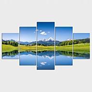 Stampe a tela Floreale/Botanical Stile Modern,Cinque Pannelli Tela Qualsiasi forma Stampa artistica Decorazioni da parete For Decorazioni