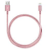 Lightning USB 2.0 Cordon Câble de Charge Câble de Chargeur Données & Synchronisation Tressé Câble Pour Apple iPhone iPad 100 cm Nylon