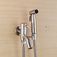 Bidet Faucets  ,  Traditional Modern  with  Stainless Steel Single Handle One Hole  ,  Feature  for Wall Mount Pull out