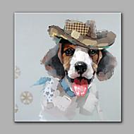 Ručně malované Abstraktní Zvíře Čtvercový,Moderní Jeden panel Plátno Hang-malované olejomalba For Home dekorace