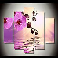 Impresiones de Arte Floral/Botánico Clásico,Cinco Paneles Horizontal lámina Decoración de pared For Decoración hogareña