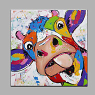 Maalattu Eläin Neliö,Moderni 1 paneeli Kanvas Hang-Painted öljymaalaus For Kodinsisustus
