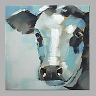Handgemalte Tier Künstlerisch Ein Panel Leinwand Hang-Ölgemälde For Haus Dekoration