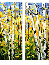 Hand-Painted Abstract Modern,Two Panels Oil Painting