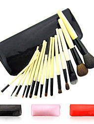 Fashion Professional Makeup Brush With Free Case(15 Pcs)