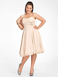 Cocktail Party / Homecoming / Sweet 16 Dress - Short Plus Size / Petite A-line / Princess Strapless / Sweetheart Knee-length Chiffon with
