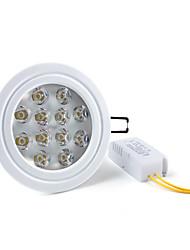 12w 1080-1200lm 6000-6500K естественный белый свет привел потолком лампочка (85-265В)