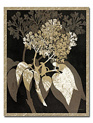 """Illustration Stretched Canvas Prints Botanical Floral 20"""" x 24"""" Tall"""