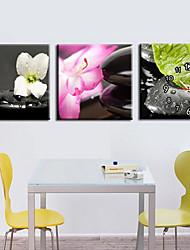 """12 """"-24"""" Moderno Orologio da parete stile floreale in Canvas 3pcs"""