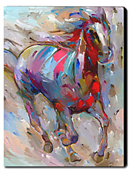 Hand Painted Oil Painting Animal Horse 1211-AN0032