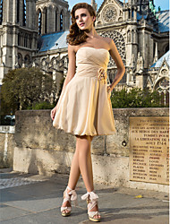 Cocktail Party Dress - Champagne Plus Sizes / Petite A-line / Princess Sweetheart / Strapless Knee-length Chiffon