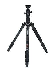 Benro Camera Tripod Kit A1691TB0
