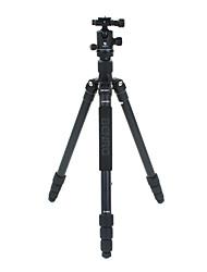 Benro Camera Tripod Kit A2681TB1