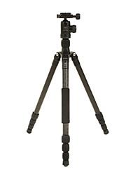 DIDEA Camera Tripod K124 for Digital Camera, SLR&DSLR