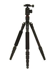 DIDEA Camera Tripod K115 for Digital Camera, SLR&DSLR