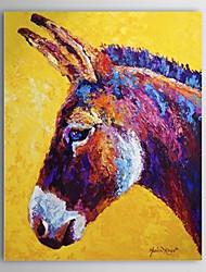 Dipinti a mano olio animale cavallo pittore 1304-AN0087