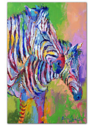 Stretched Canvas Art Animal Zebra by Richard Wallich Ready to Hang
