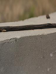 Universal-In-line Bar Style Laubholz Pole Perch für Vögel (20 x 1cm)