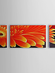 Hand Painted Oil Painting Floral Sunflower Set of 3 with Stretched Frame 1307-FL0180