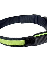 Dog Collar LED Lights Green / Blue / Pink Nylon