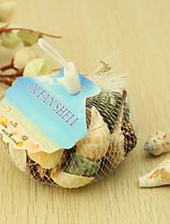 Wedding Décor Ocean Shell  Decoration