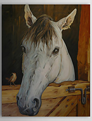 Stretched Canvas Art Animal Horse in the Stable