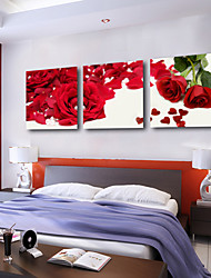Stretched Canvas Art Floral Rose Petal Set of 3