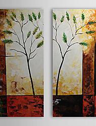 Hand geschilderd olieverfschilderij Botanische Boom met gestrekte frame Set van 3 1308-FL0768