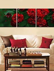 """12 """"-24"""" Stile Country Rose Orologio da parete in tela 3pcs"""