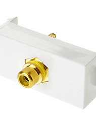 Keystone Jack modulaire RCA White Center Flush Type Blanc