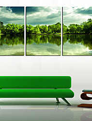 Stretched Canvas Art Landscape Forest and Lake Set of 3
