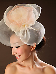Women's Tulle Headpiece-Wedding / Special Occasion Flowers