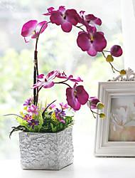 """17.75 """"orchidée papillon de couleur argent vase carré"""