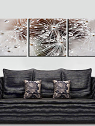 Stretched Canvas Print Art Abstract Water Drops Set of 3
