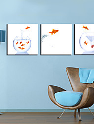 Stretched Canvas Print Art Animal Jumping Fish Set of 3