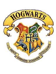 Harry Potter Hogwarts School Logo Multicolour Tattoo for Body Art Painting Body Sticker Nontoxic and Tasteless Cosplay Accessory
