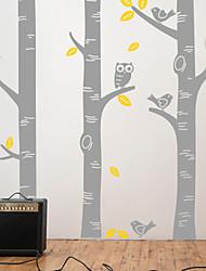Botanical Birch Tree Wall Decal Wall Stickers