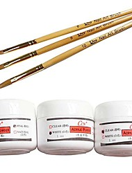 Nail Art Acrylic Pen Kits(3PCS Nail Art Acrylic Brush&3-Color Acrylic Powder)