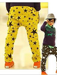 A cinque punte Stars stampa pantaloni del ragazzo