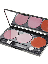 DANNI 3 Color Blusher(Color No.07)