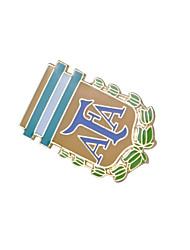 ЧМ-2014 Аргентина Сборная значки
