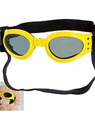Frescos de protecção Cachorro Goggles (cores sortidas, M)