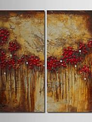 Dipinto a mano pittura a olio astratta Fiori rosso con telaio allungato Set di 2