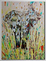 Hand Painted Oil Painting Animal Abstract Elephant  with Stretched Frame